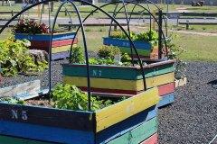 delacombe-community-garden-1